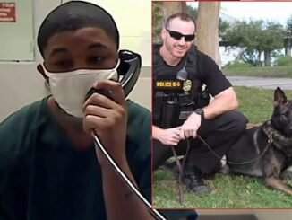 Florida teen who fatally shot police K-9 is sentenced to 25 years.