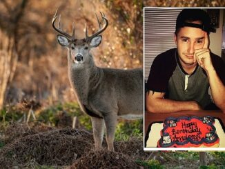 Father Fatally Shoots Son, Mistaking Him For A Deer.
