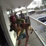 Florida woman throws her German Shepherd off  2nd floor balcony