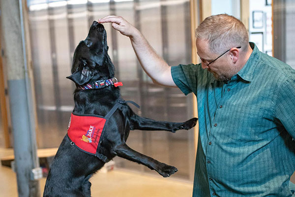 Blackbird and the Puppy Jake Foundation
