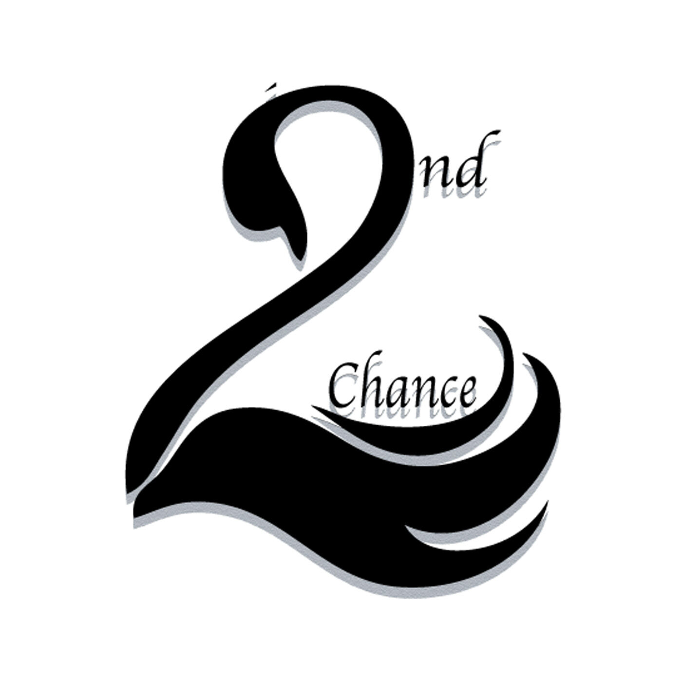 2nd Chance Consulting