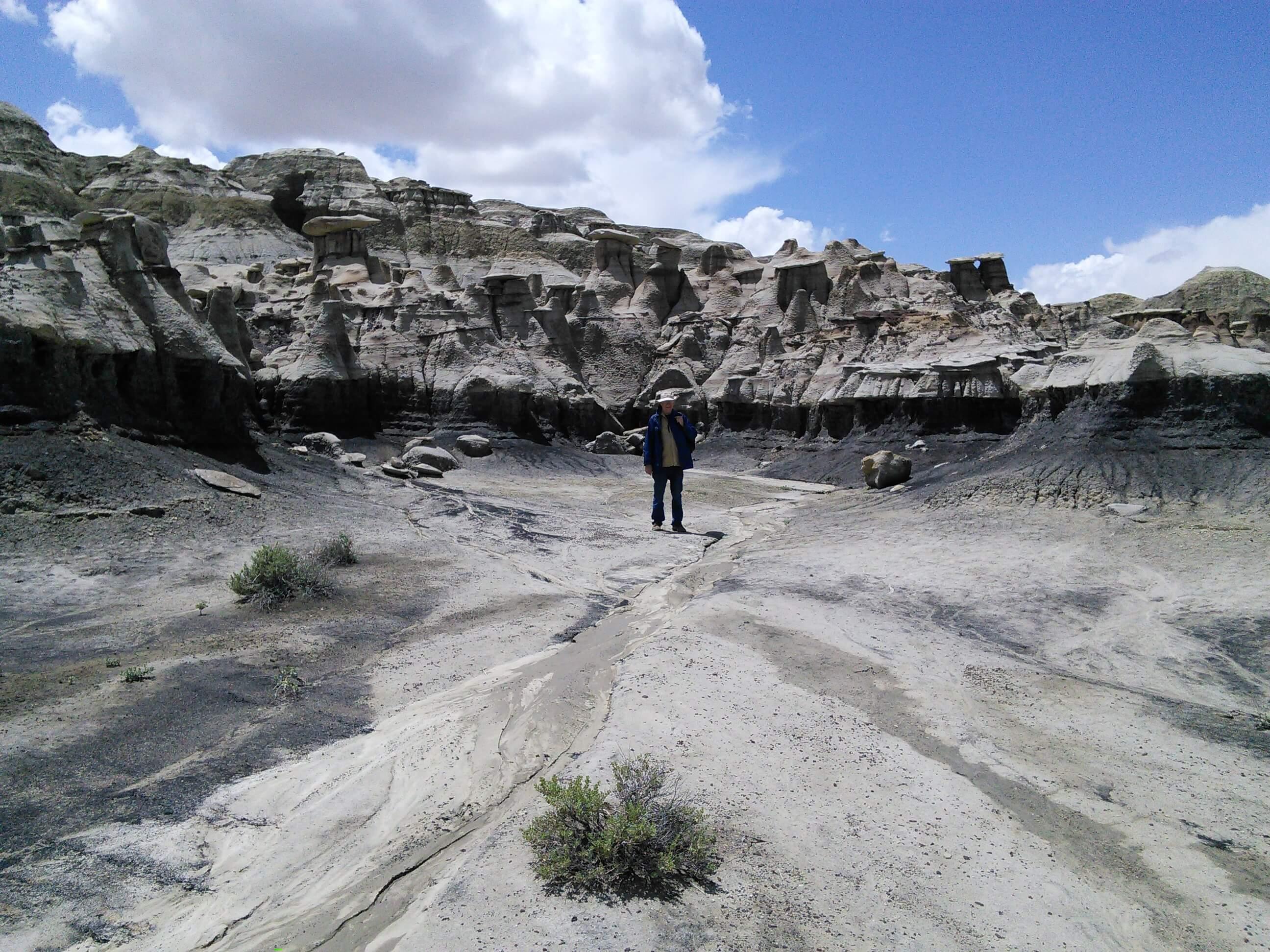 Bisti / De Na Zin Wilderness, NM