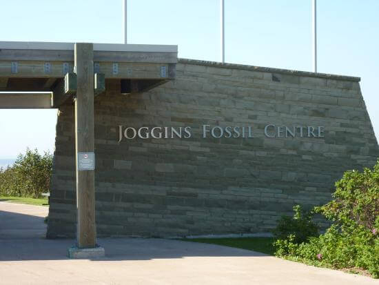 Joggins Fossil Center, Joggins Fossil Cliff, NS