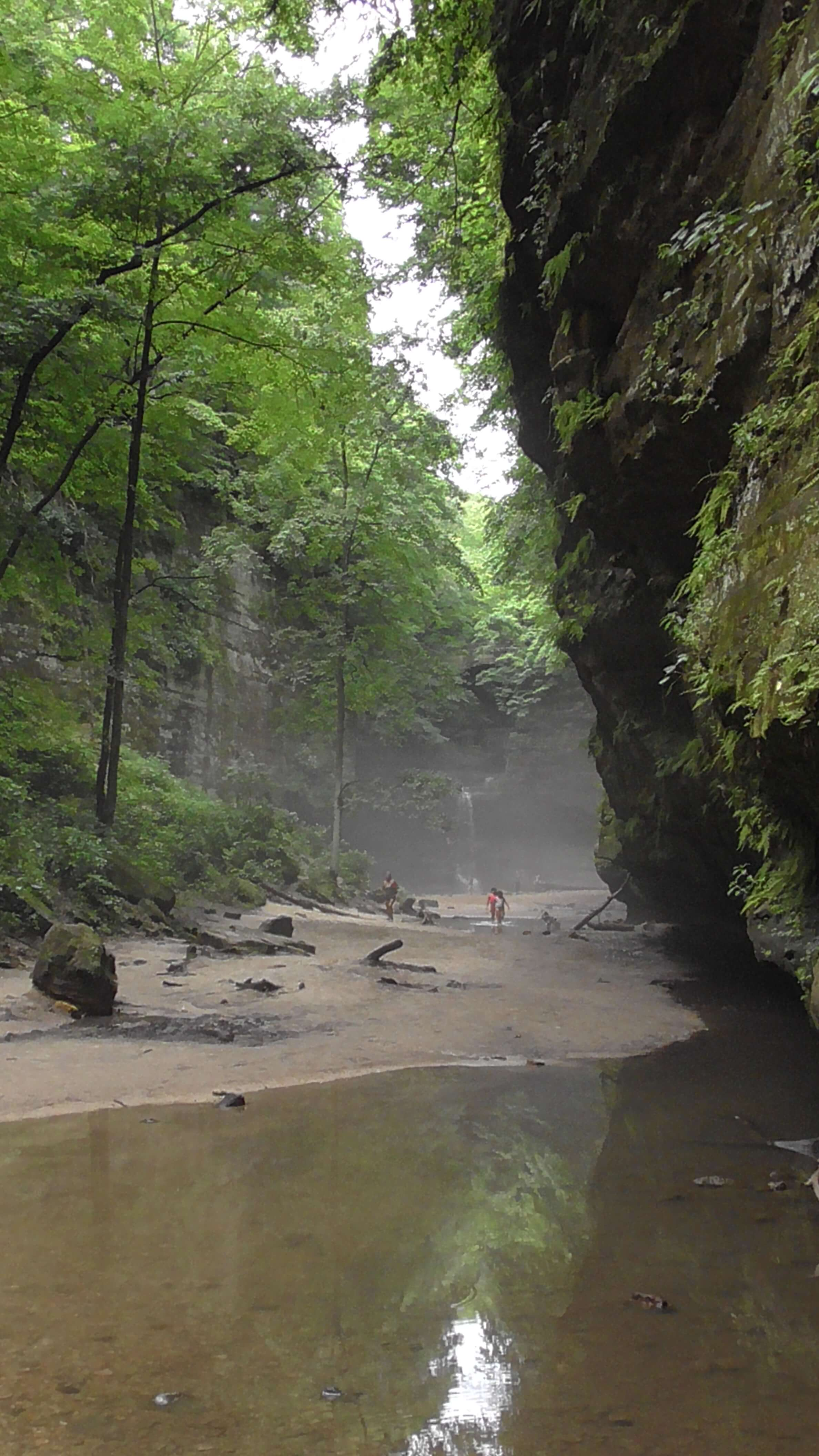 Dell's Creek Canyon, Matthiessen State Park