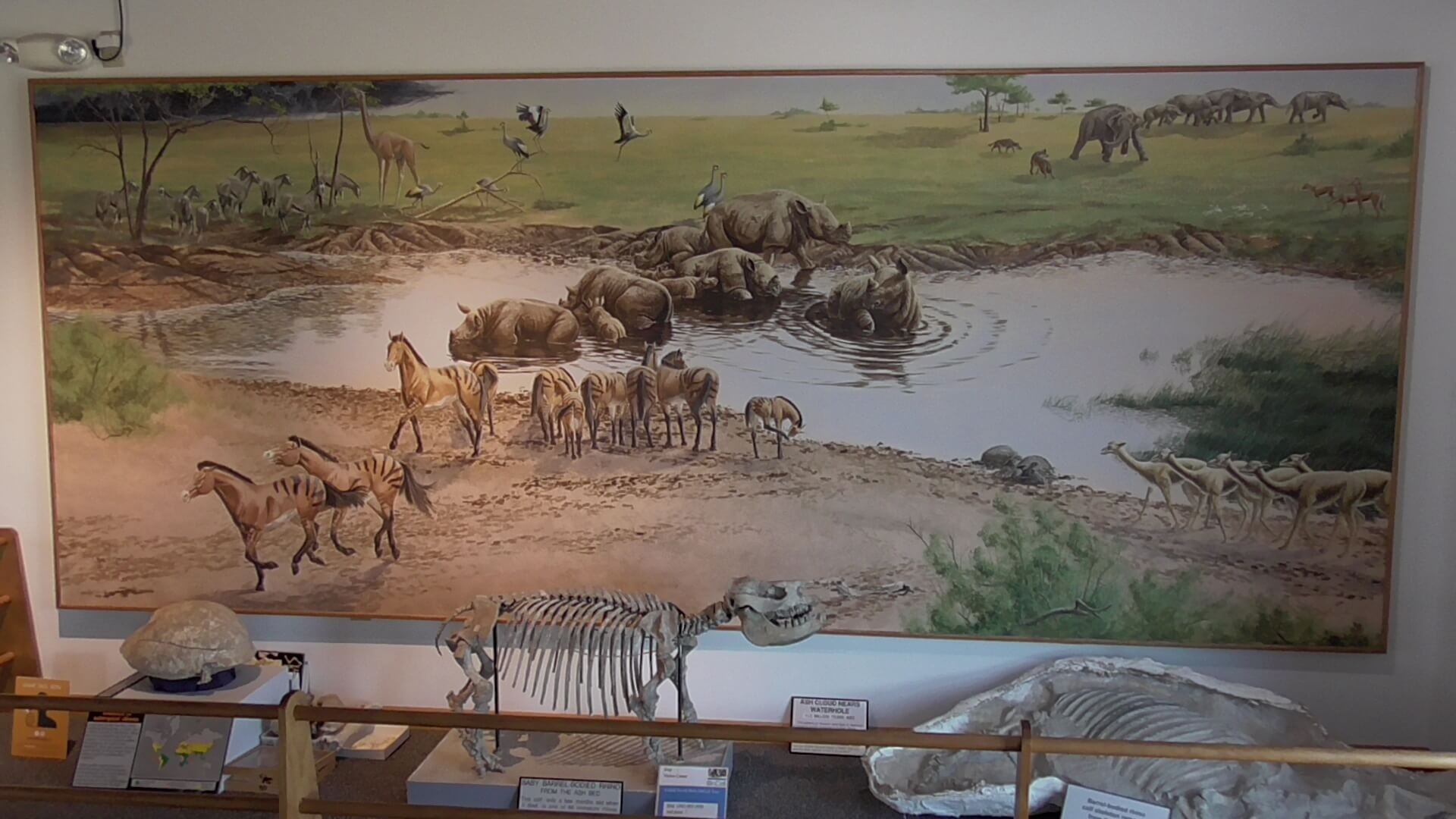 Mural of Miocene fauna at the site before the ashfall