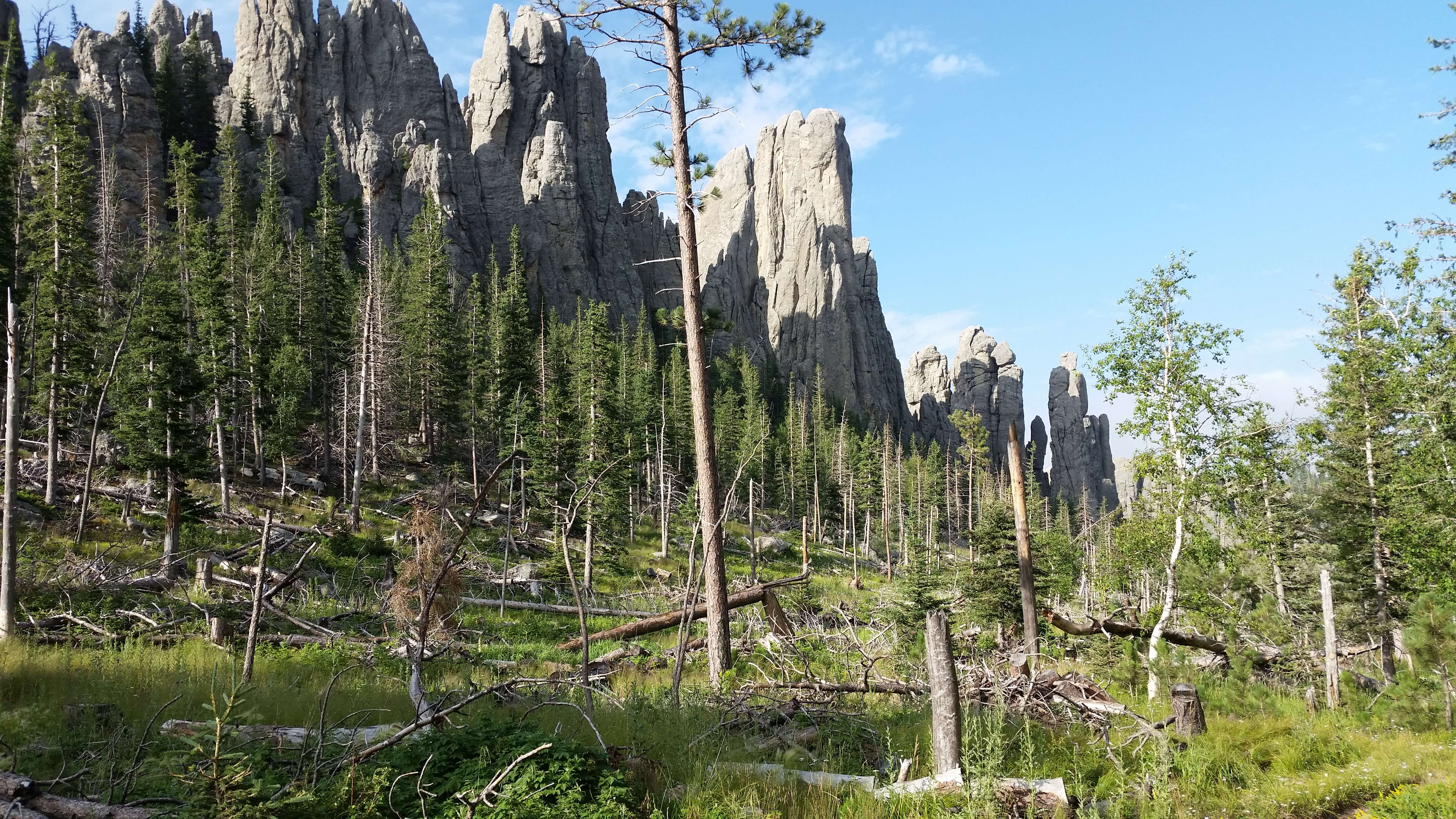 Cathedral Spires, Custer State Park