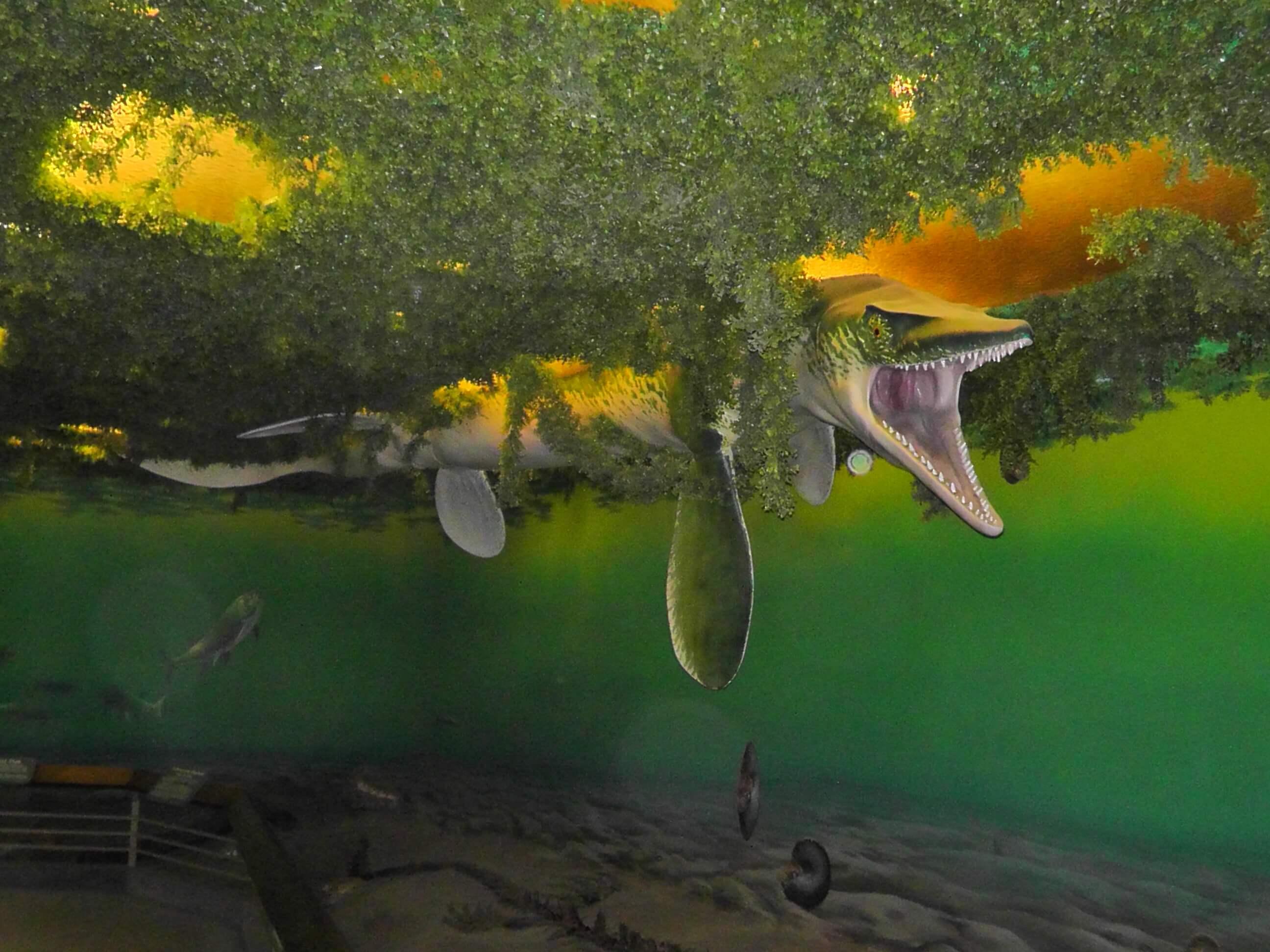 Mososaur, Royal Saskatchewan Museum, Regina, Saskatchewan