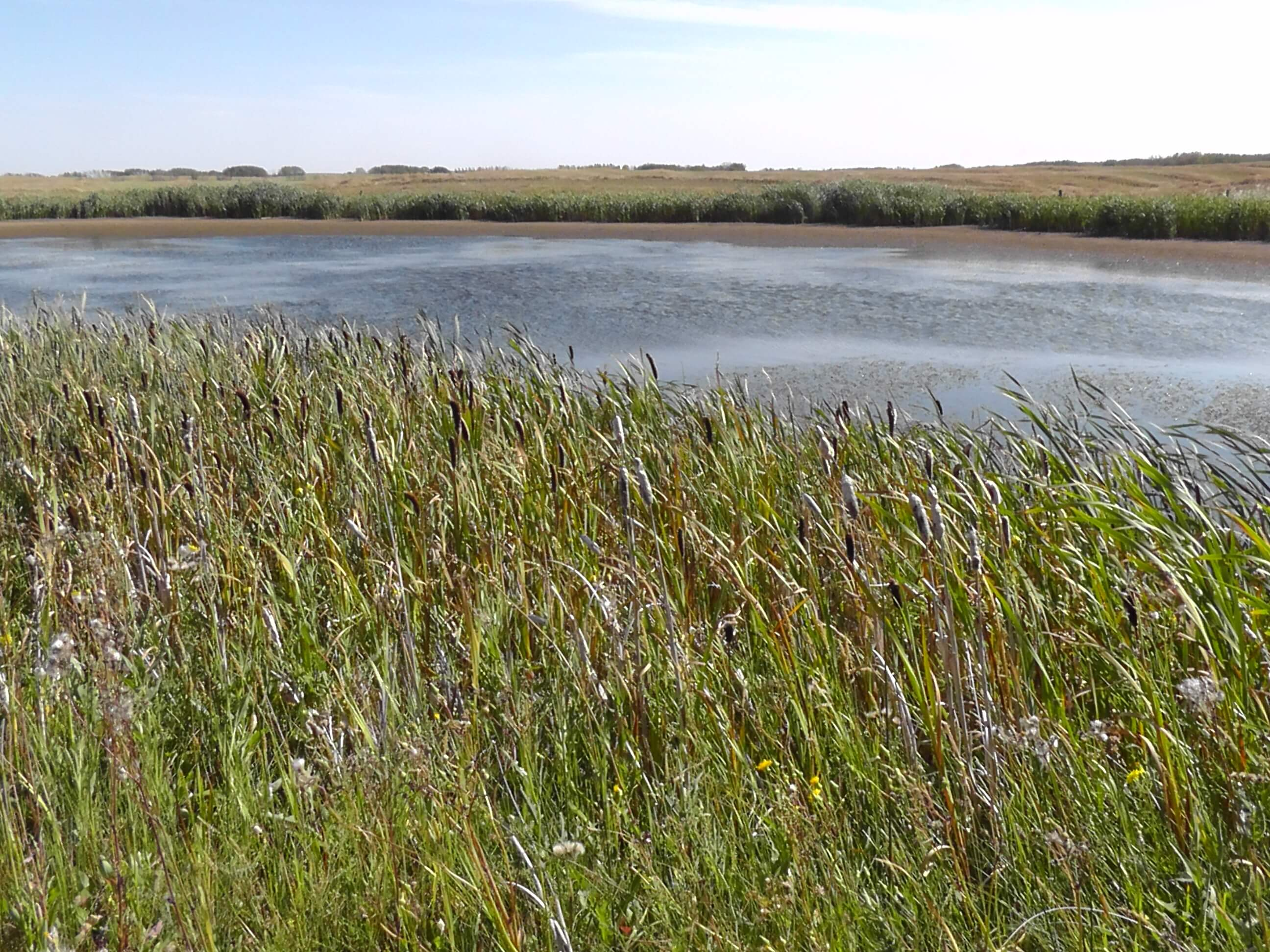 Lake, Saskatchewan