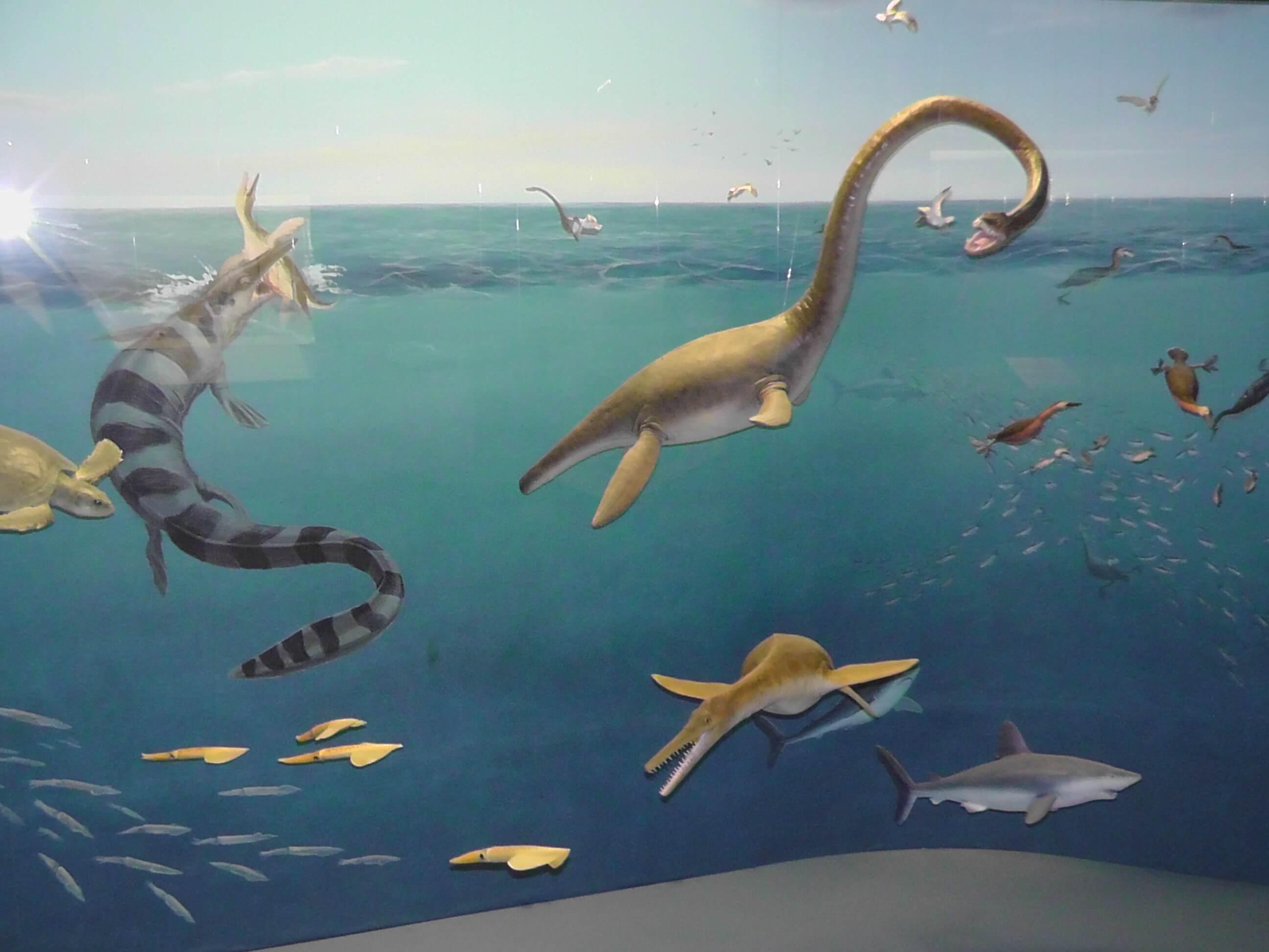Cretaceous sea scene, Canadian Fossil Discovery Center, Morden, Manitoba