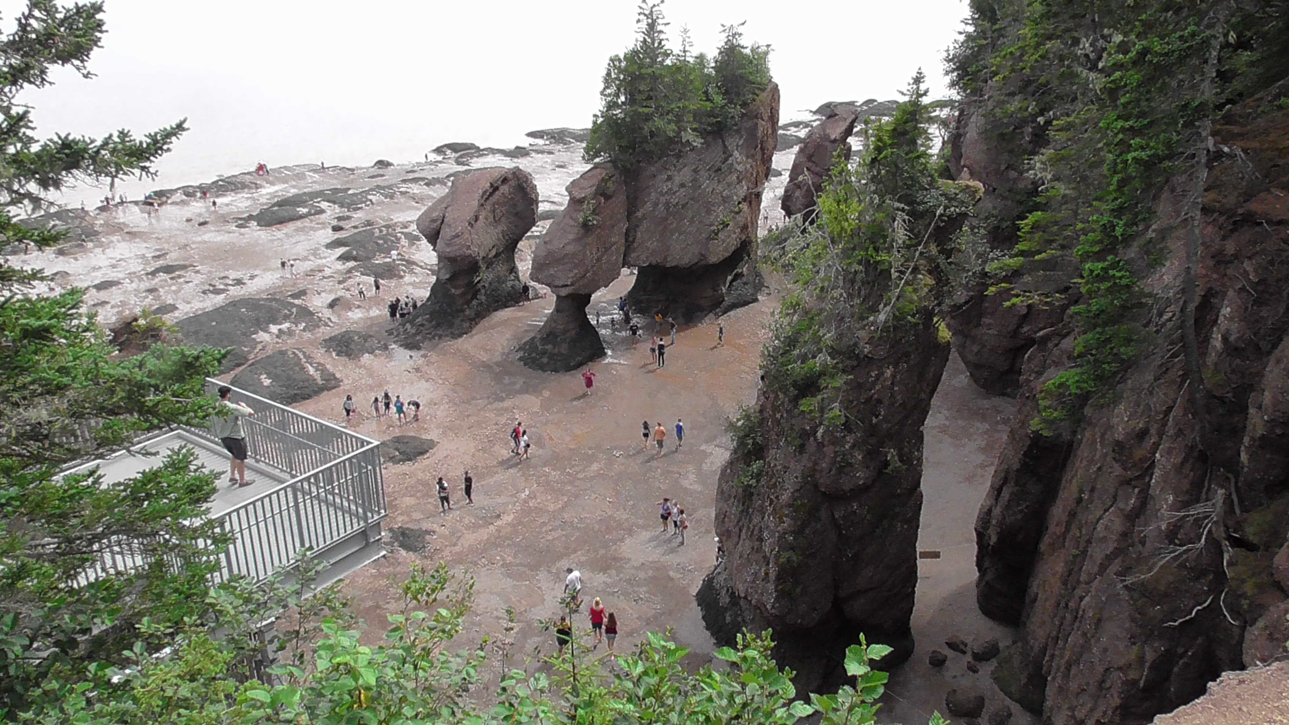 Hopewell Rocks at low tide - View from the top - Lover's arch in the middle
