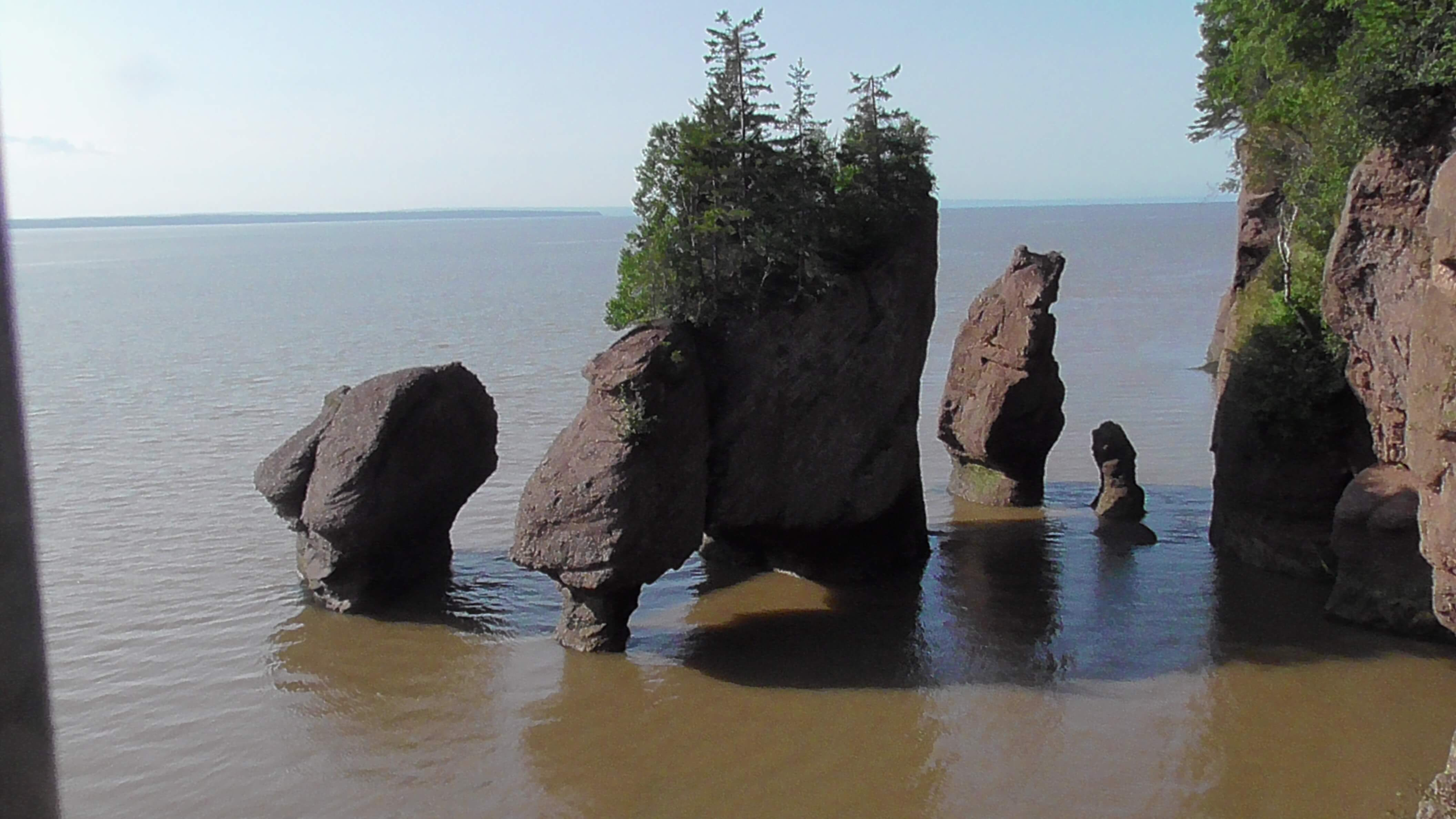 Hopewell Rocks at high tide Wednesday Morning