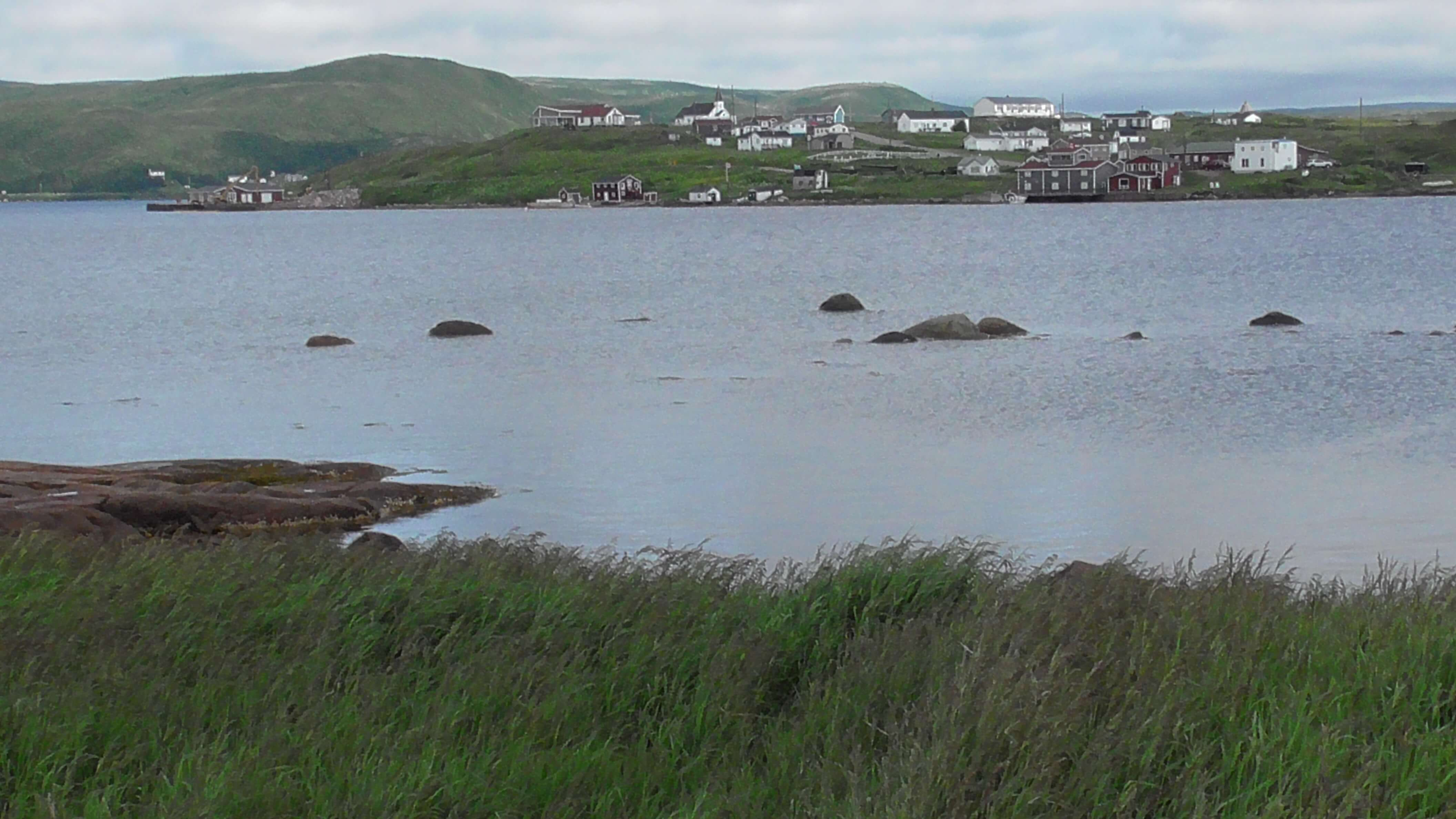 Red Bay from Saddle Island, Labrador