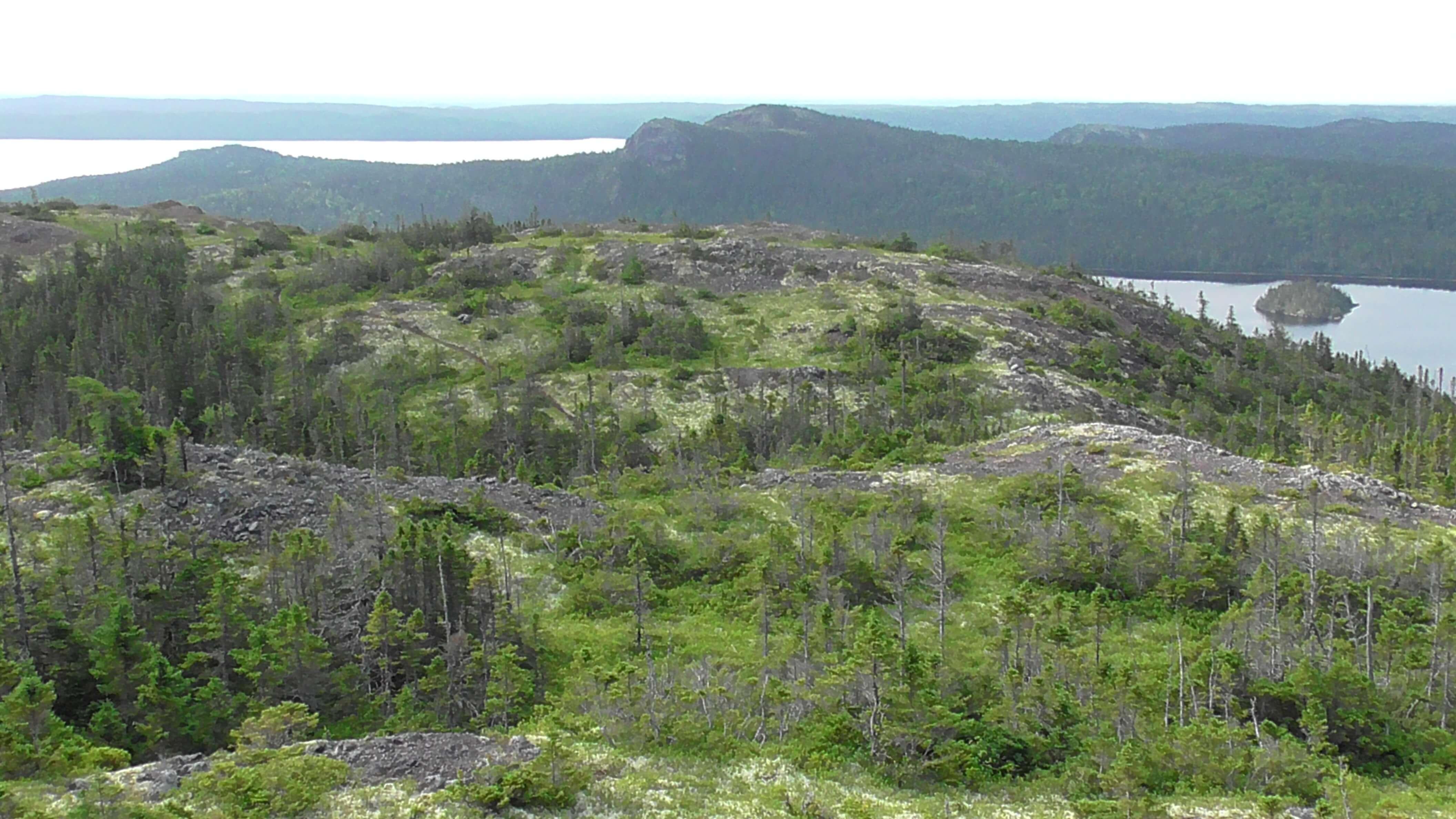 View from Ochre Hill Lookout, Terra Nova National Park, Newfoundland