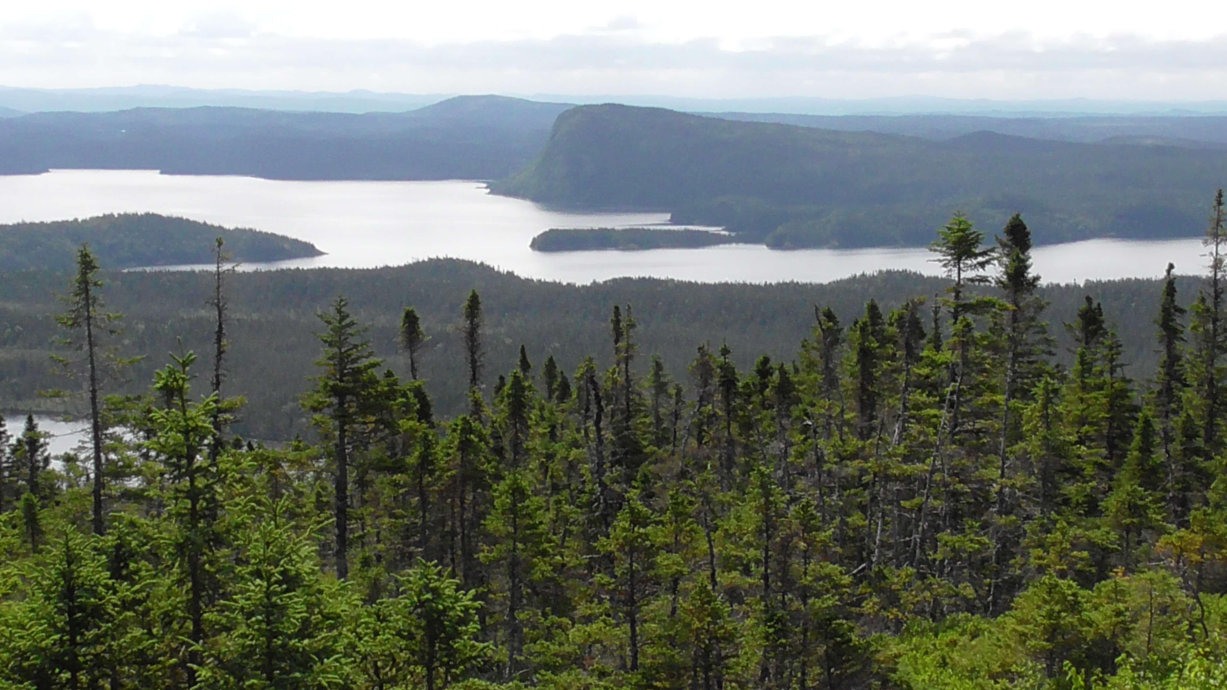 View from Blue Hill, Terra Nova National Park, Newfoundland