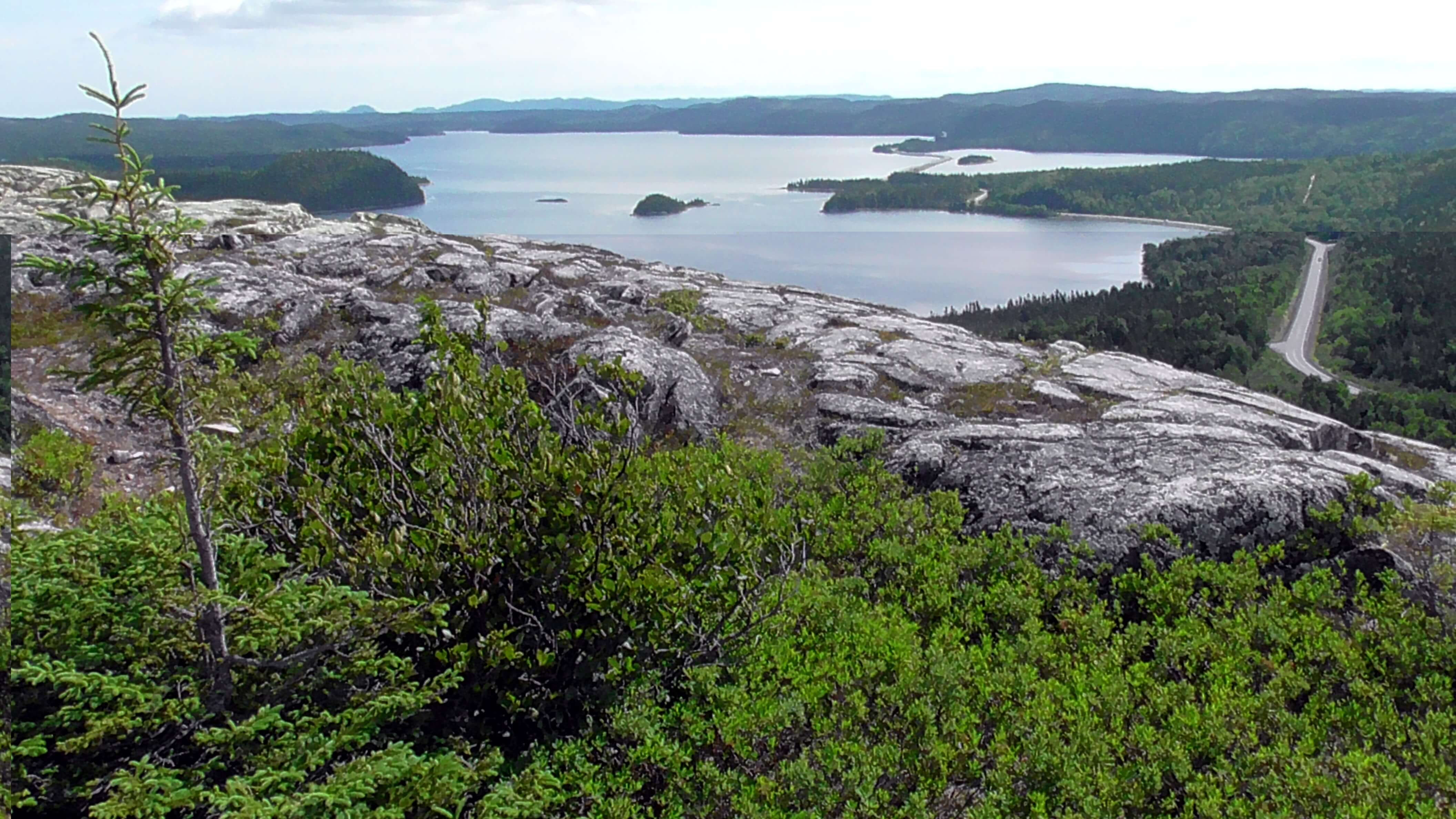 View from Mill Cove Lookout, Terra Nova National Park, Newfoundland