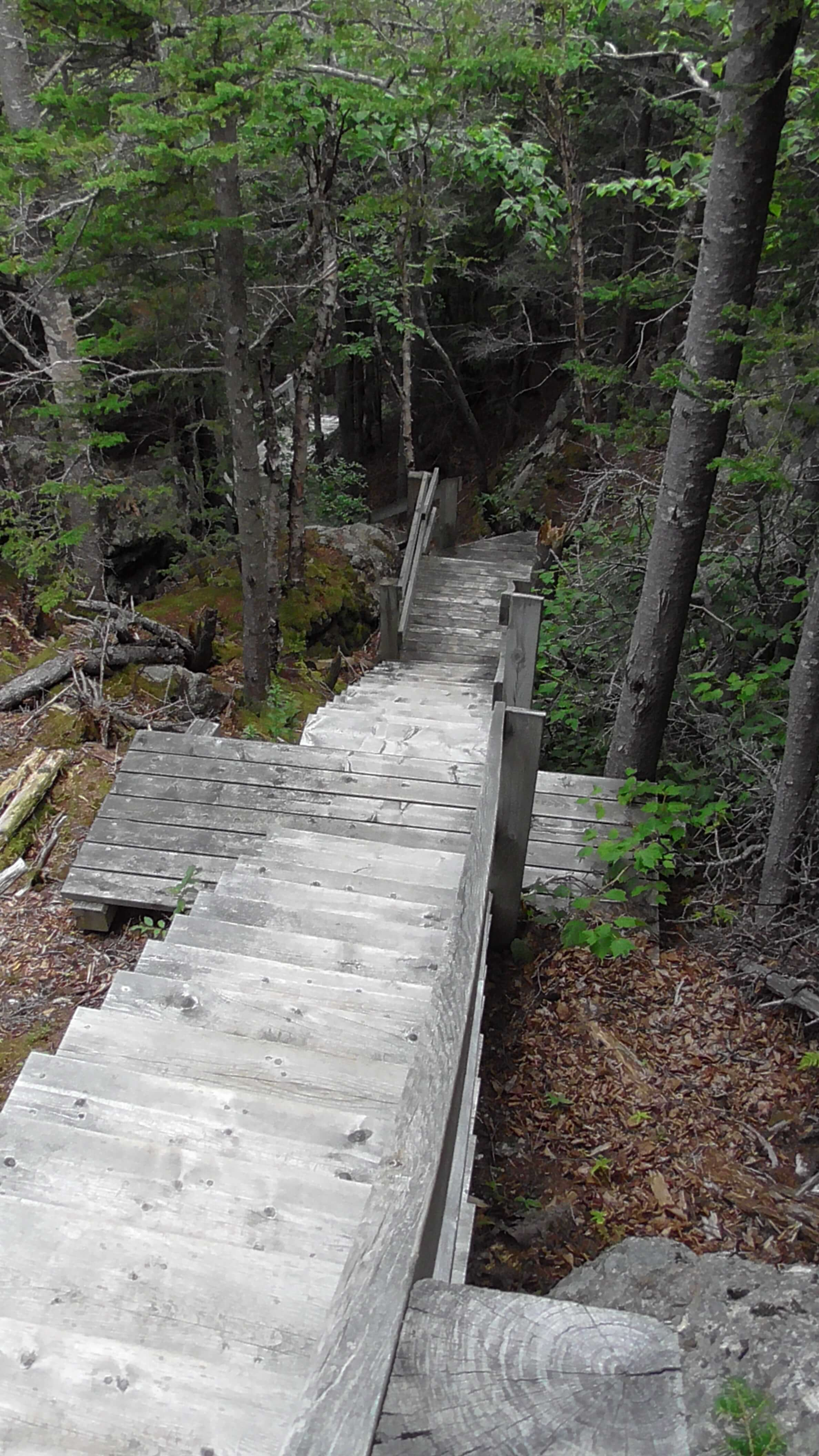 Just a few of the steps up to Sunset Hill