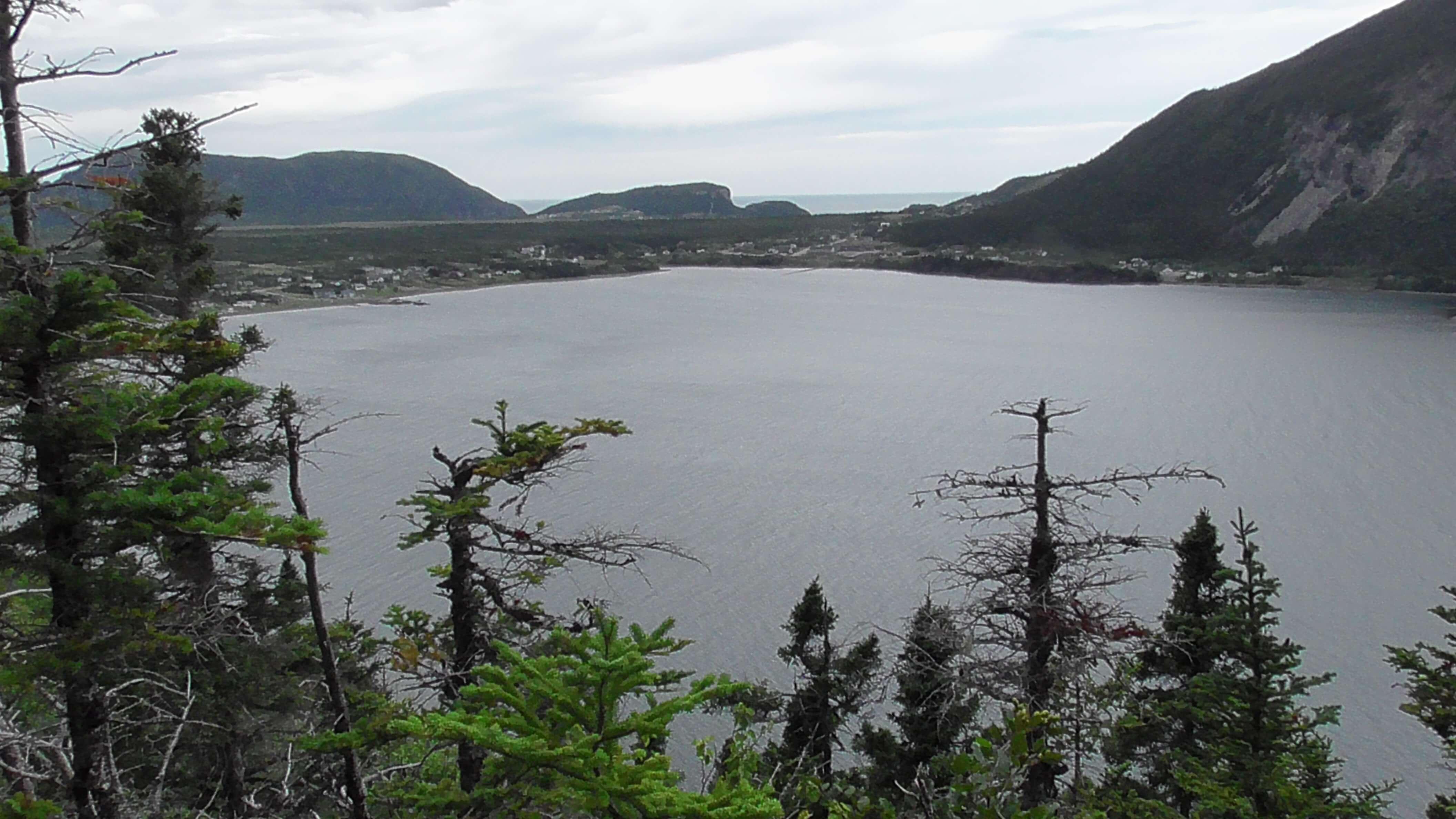 Lark Harbour from Blow Me Down Provincial Park