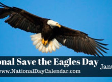 National Save the Eagles Day