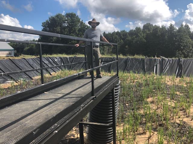 R & M Farms Sludge Treatment Wetland in Tar Heel, NC