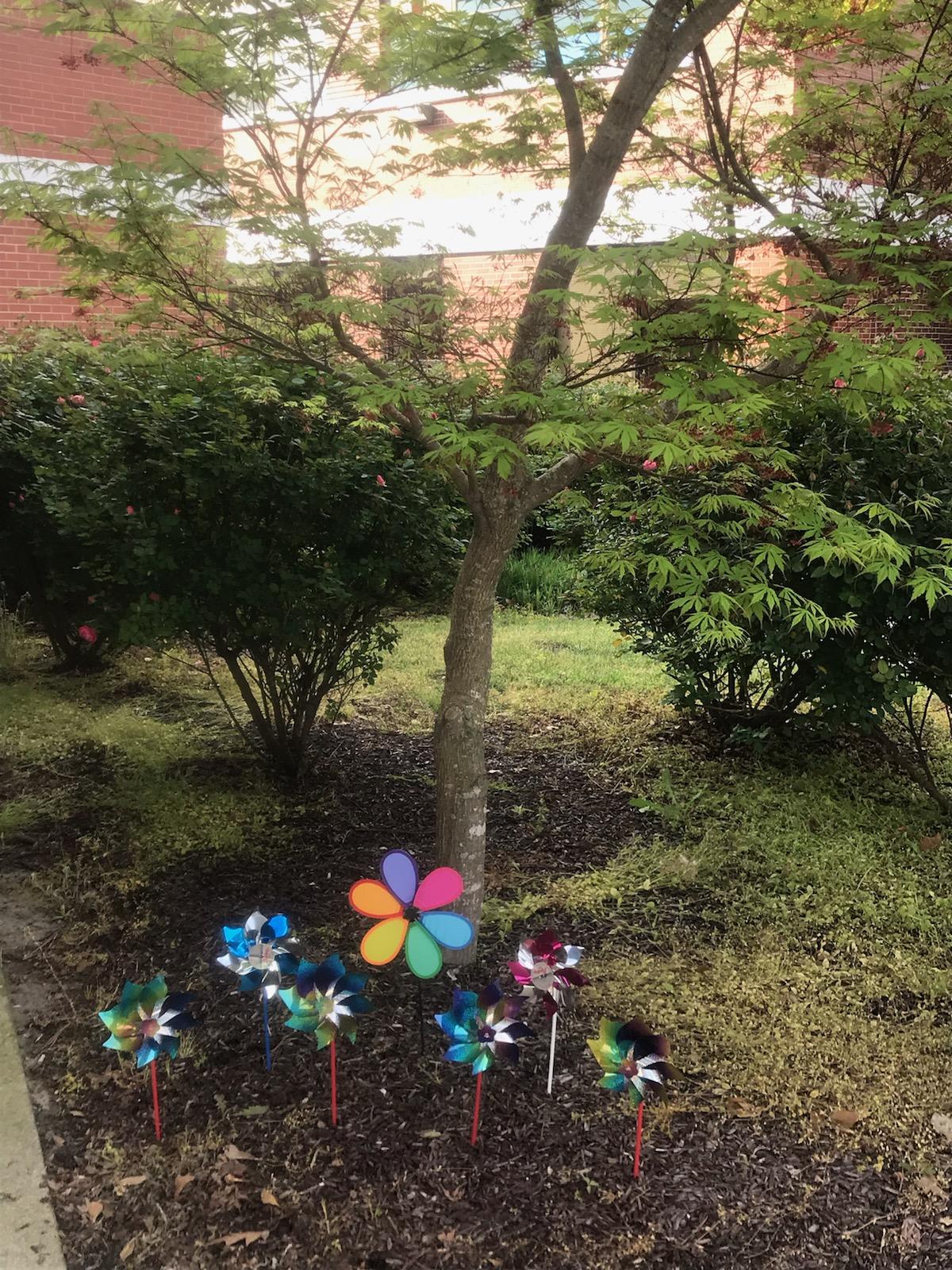 2019 Pinwheel Garden-3