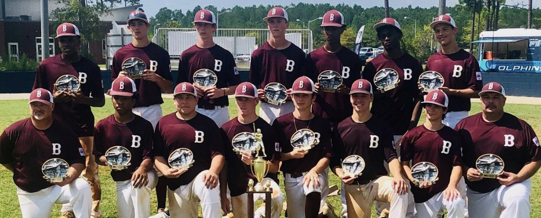 Dixie Pre-Majors World Series: Ozark, Alabama 5, Bladen County 4