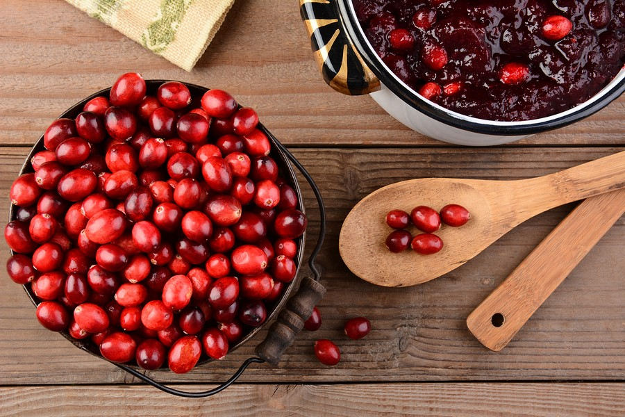 Easy & Elegant Cranberry Sauce Recipe {learn about cranberry health benefits}