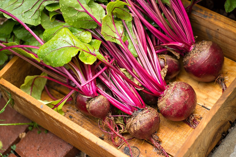 Beet you to it! Are Beets Healthy? Beet Recipes  {roasted beets | roasting beets}