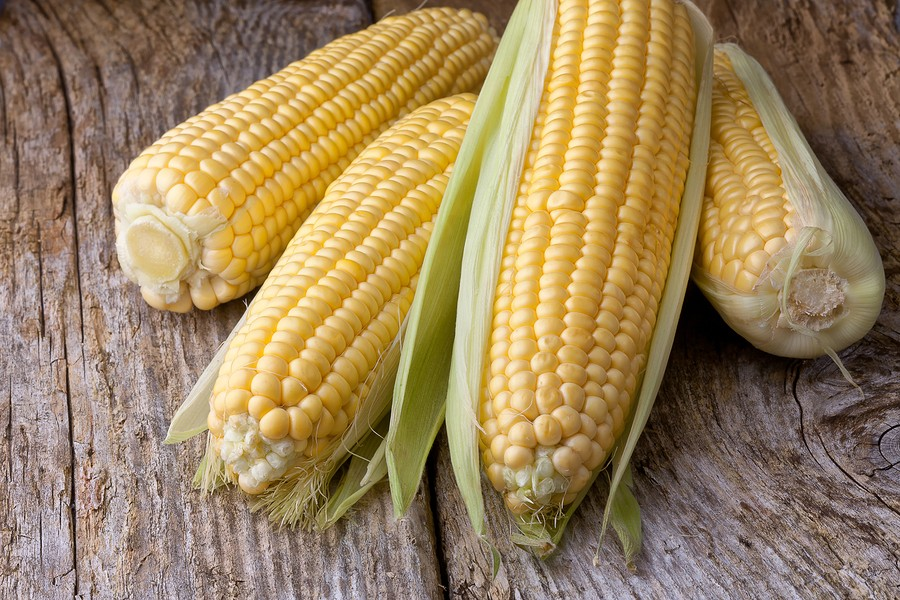 How to Microwave Sweet Corn: Corn Nutrition Corn and Bean Salad Recipe