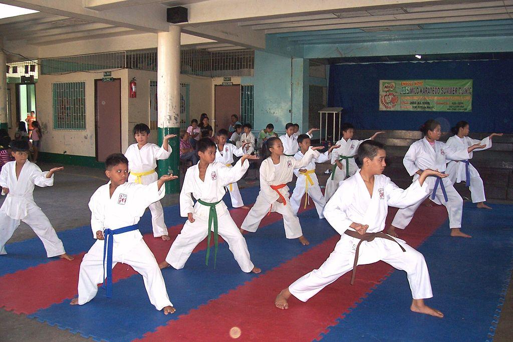 Children practicing karate. Source: Wikipedia