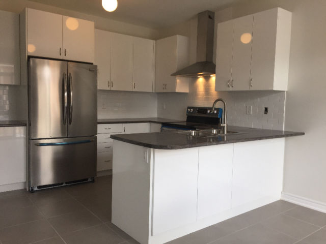 GORGEOUS BRAND NEW 2 STOREY IN GEORGETOWN