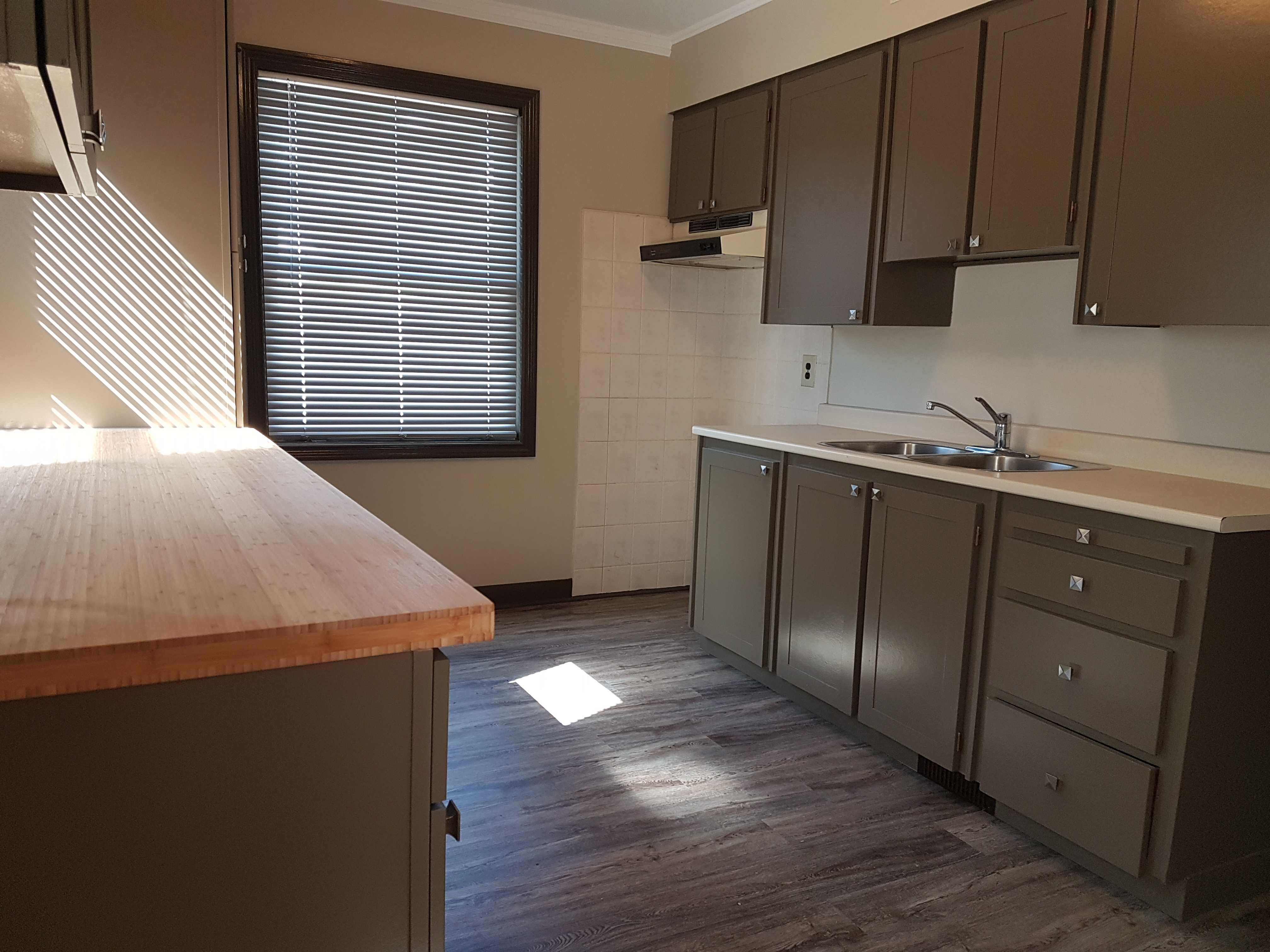 COMPLETELY RENOVATED HOME WITH GARAGE IN SOUTH WALKERVILLE