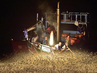Jinshan Sulfuric Fire Fishing