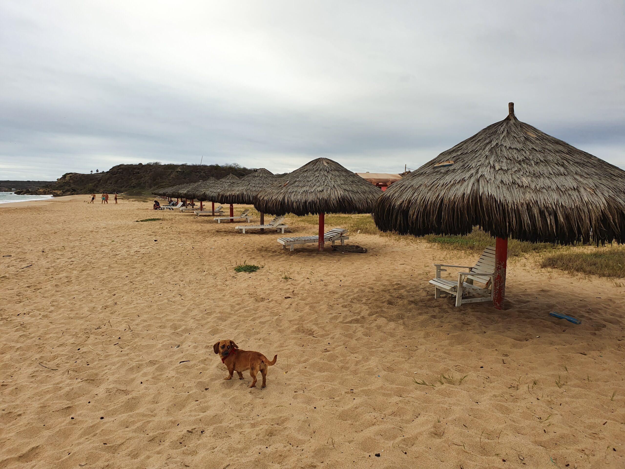 Playa Rosada