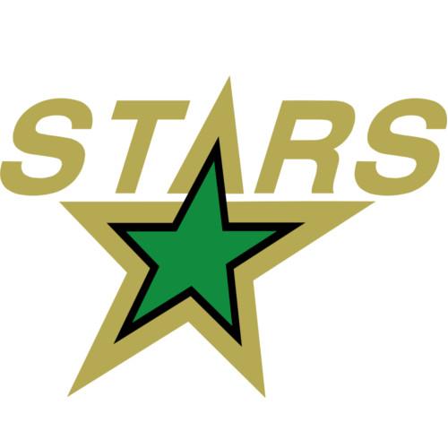 Minnesota North Stars Logo 1991-1993