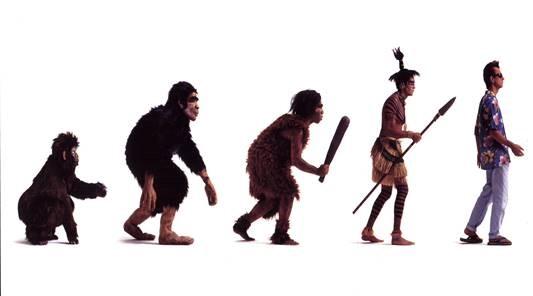 Evolution Perry Sasnett