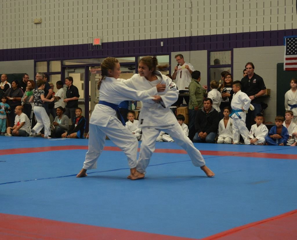 addison -judo