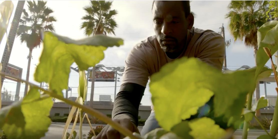 Ron Finley-The Gangsta Gardener