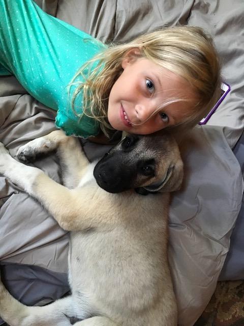 Sasnett Family-We Got a Puppy