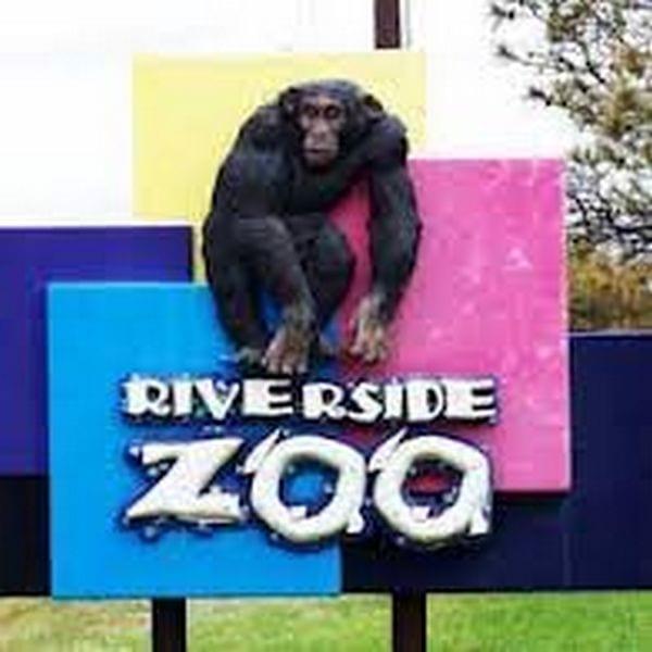 Riverside Zoo