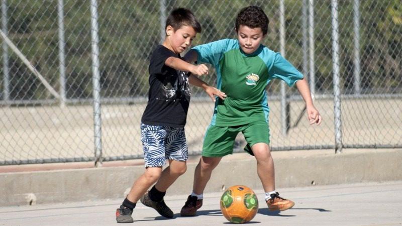 Esportes Gratuitos no Parque da Cidade