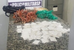Drogas apreendidas pela PM em Jundiapeba - Mogi das Cruzes