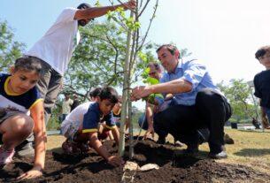 Plantio de árvores - Prefeitura de Mogi das Cruzes