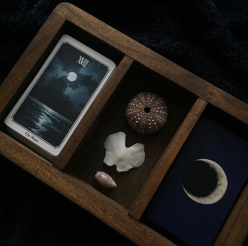 Nocturna Oracle Deck Black Moon Botanica