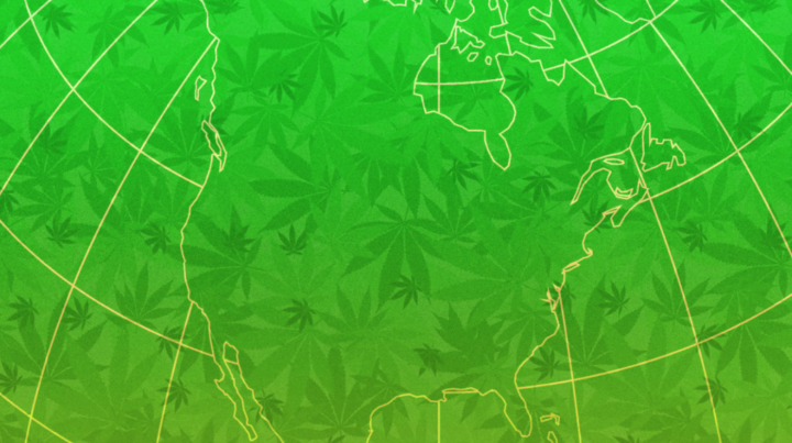 As Legalized Cannabis Spreads, its Startup Economy is Booming