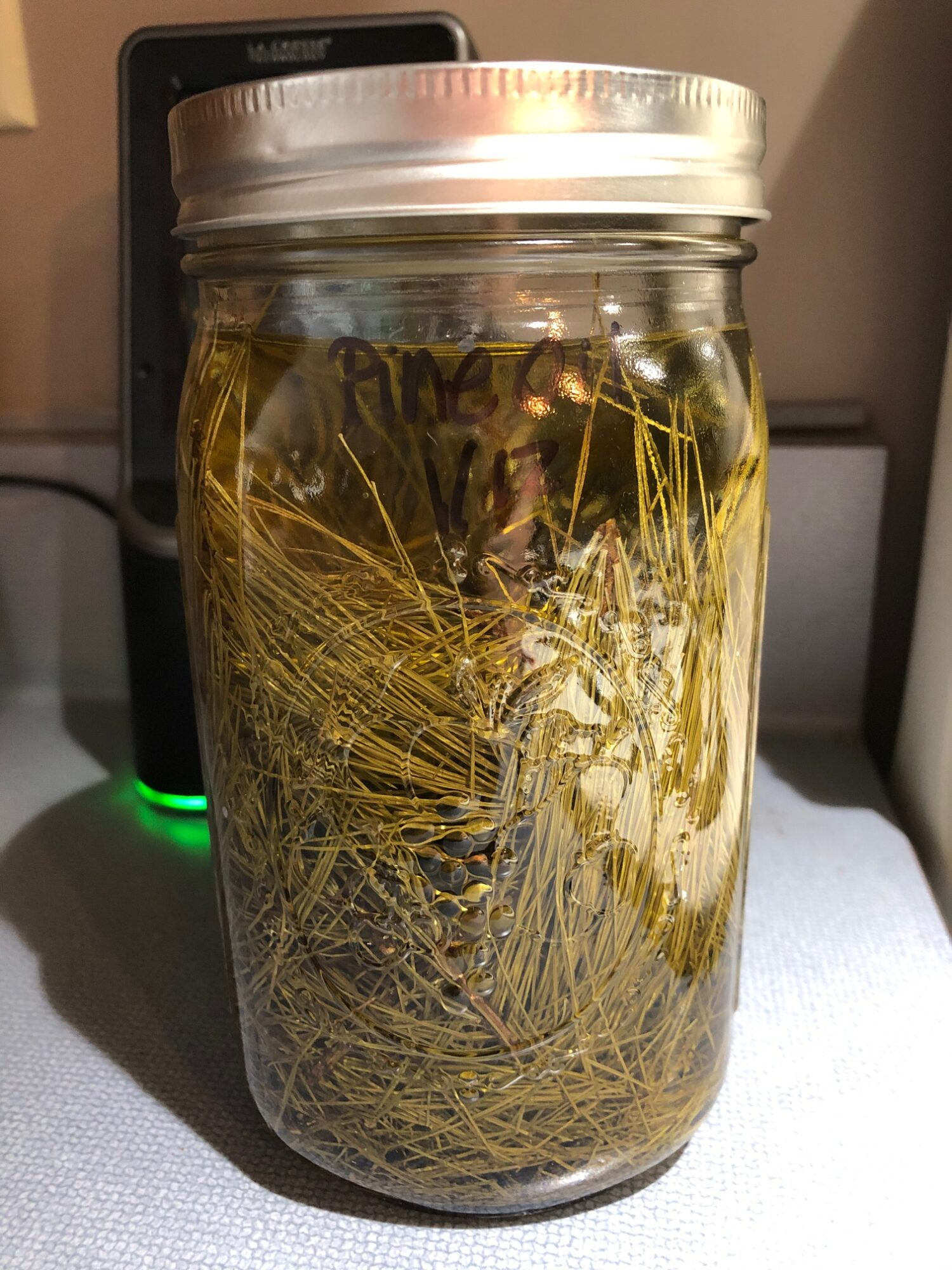 White Pine Needle Infused Oil