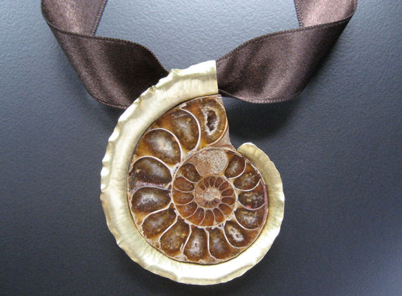 Ammonite Pin/Pendant