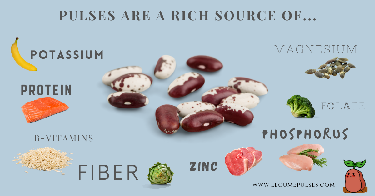 List of the main nutrients in pulses.
