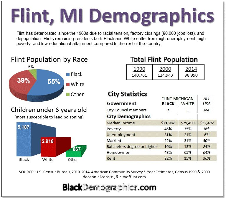 Flint Demographics Charts 2
