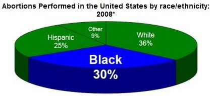 30 percent of all abortions are African American