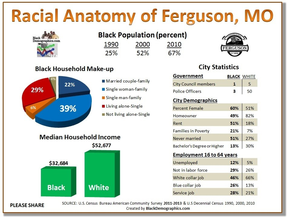Ferguson Demographics